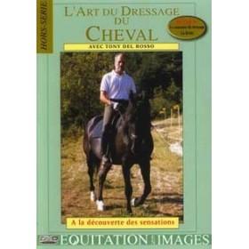 Art du dressage du cheval (DVD)
