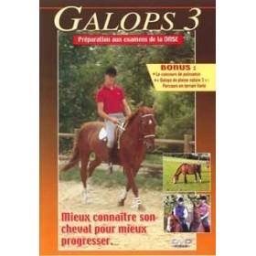 Galops 3 - Connaître son cheval pour mieux progresser (DVD)